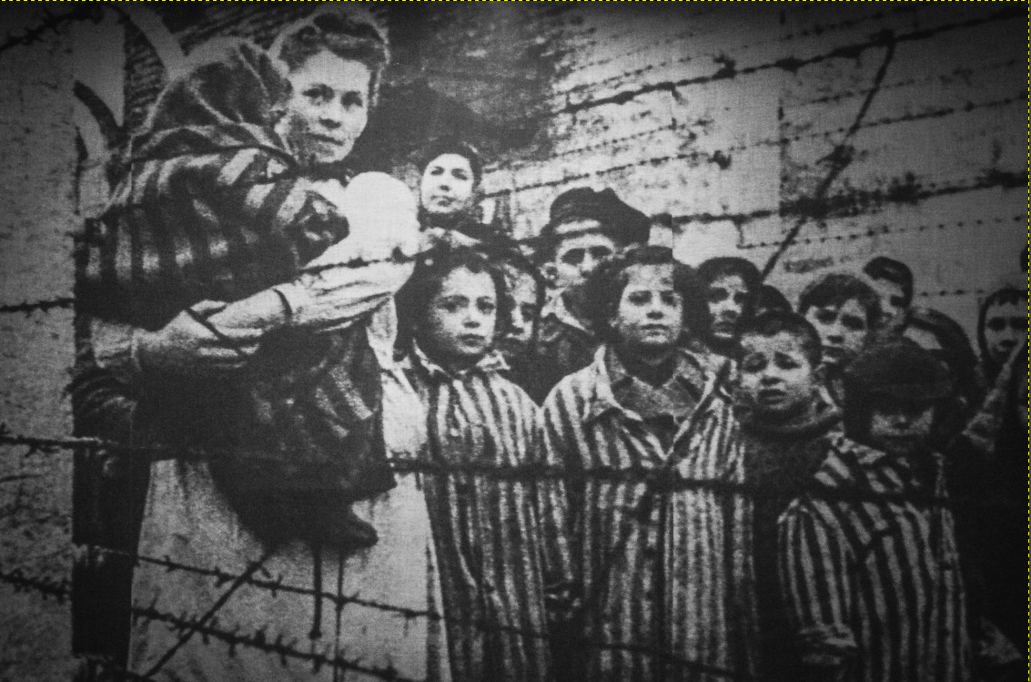 Burning the Right to Question History: The Criminalization of Holocaust Denial
