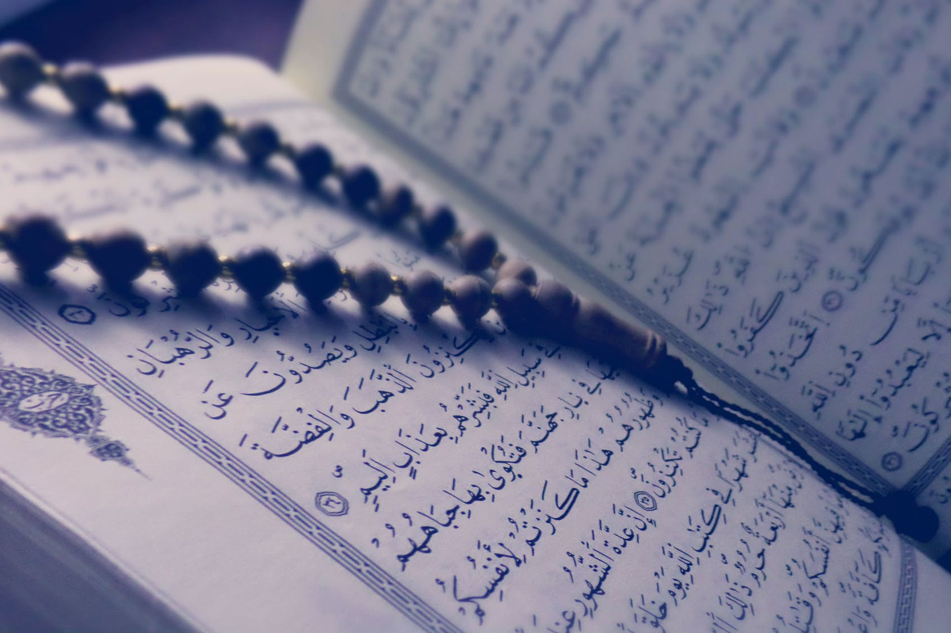 Qur'anophobia: The Core Truth of Islamophobia
